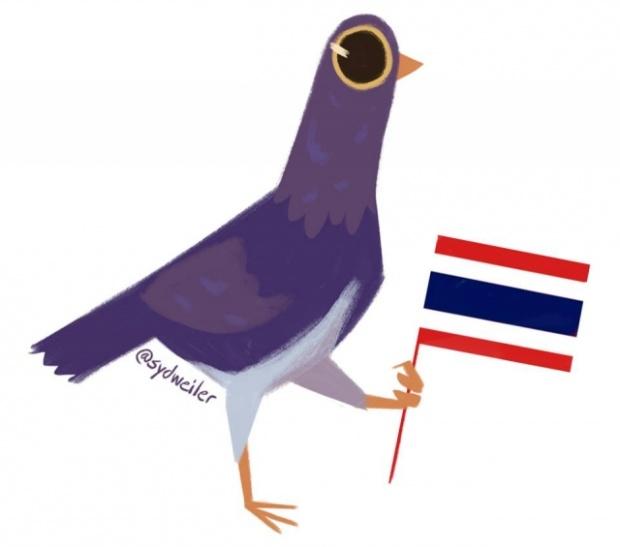 ผงกหัวทั่วโซเชียล! นก Trash Dove ฮิตหนักในไทย จนผู้ออกแบบทึ่ง-โพสต์ขอบคุณ