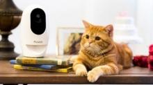 Acer เปิดตัว Pawbo+ กล้องไร้สายสำหรับเชื่อมต่อผู้คนกับสัตว์เลี้ยงตัวโปรด