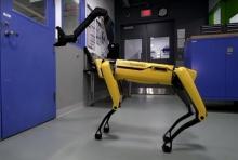 หุ่นยนต์คล้ายสุนัขเปิดประตูได้ (คลิป)