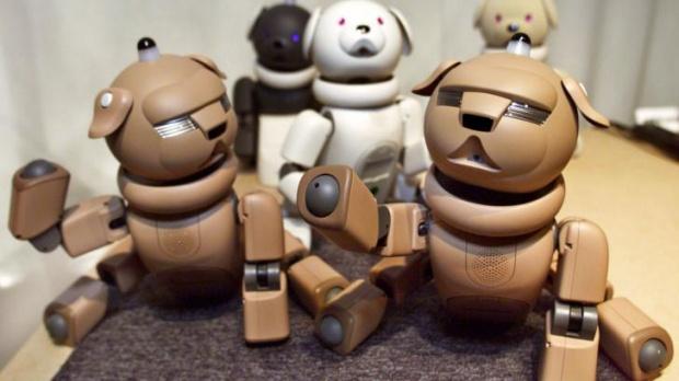 Sony วางแผนกลับไปลงทุนในธุรกิจพัฒนาหุ่นยนต์อีกครั้ง